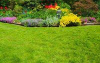 Gardens & Flower Beds